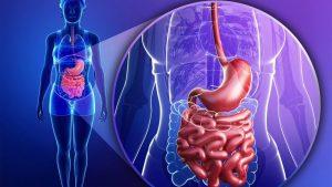 Maio Roxo: entenda a importância do diagnóstico precoce das doenças inflamatórias intestinais